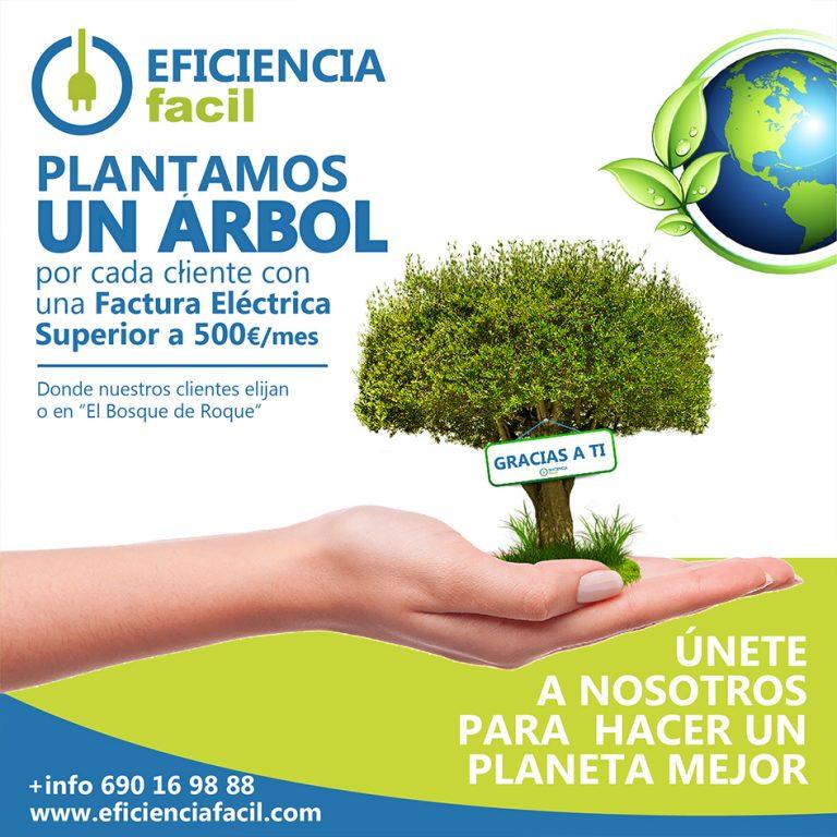 Plantamos un Árbol Gracias a ti